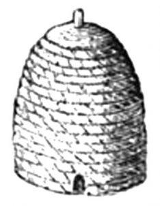 bee-3